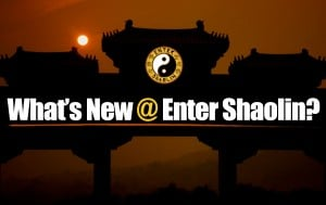 Enter Shaolin Update | Meditation Monday, C.O.R.E. Training Challenge, Chunking Your Why + More
