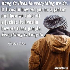 Learn Kung Fu Online   Sneak Peak Of The Lessons Inside Enter Shaolin