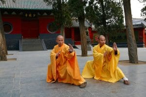 3 Pillars of Training | Can I Learn Kung Fu Without A Training Partner?