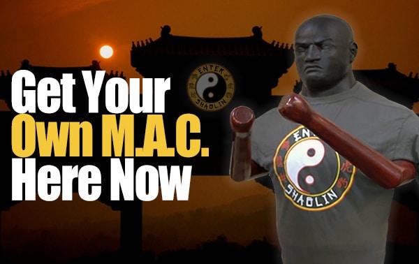 Enter Shaolin   Get your Martial Art Companion here.