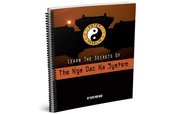 The Ngo Dac Na Ebook Cover