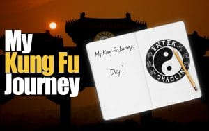My Kung Fu Journey | Qigong Feelings, C.O.R.E. Training Modifications & The Perfect Punching Bag