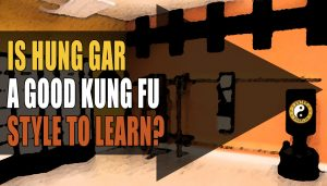 Should I Learn Hung Gar A Good Kung Fu?